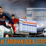 Panduan Anti Kalah Judi Bola Secara Online